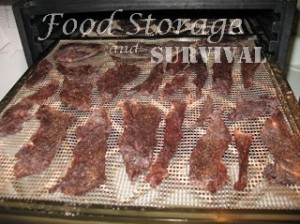 Easy Jerky from deer or elk in a dehydrator!