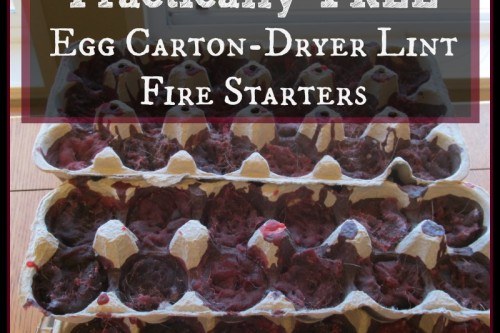 Practically Free Egg Carton Dryer Lint Firestarters
