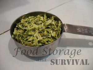 How to dehydrate shredded zucchini.  So easy!