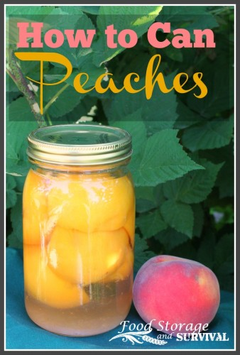 How to can peaches.  Step by step, simple and so yummy canning project!  - Food Storage and Survival