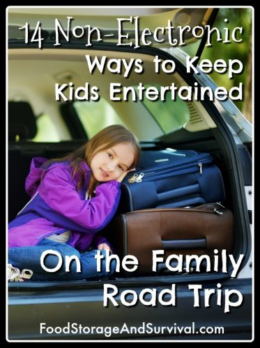 Traveling with kids? You WILL need this!14 Non-Electronic ways to keep the kids entertained on your next family road trip!