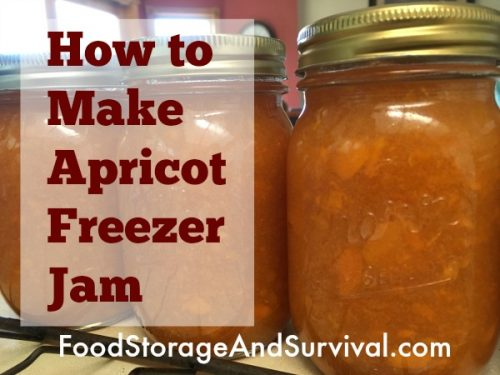 How to make apricot freezer jam! So easy even a busy mom can do it!
