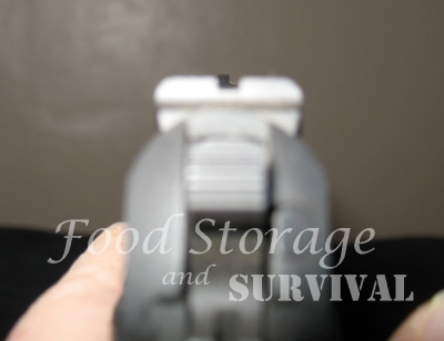 How to hit what you're aiming for.  Sight alignment and sight picture for firearms beginners!  Food Storage and Survival