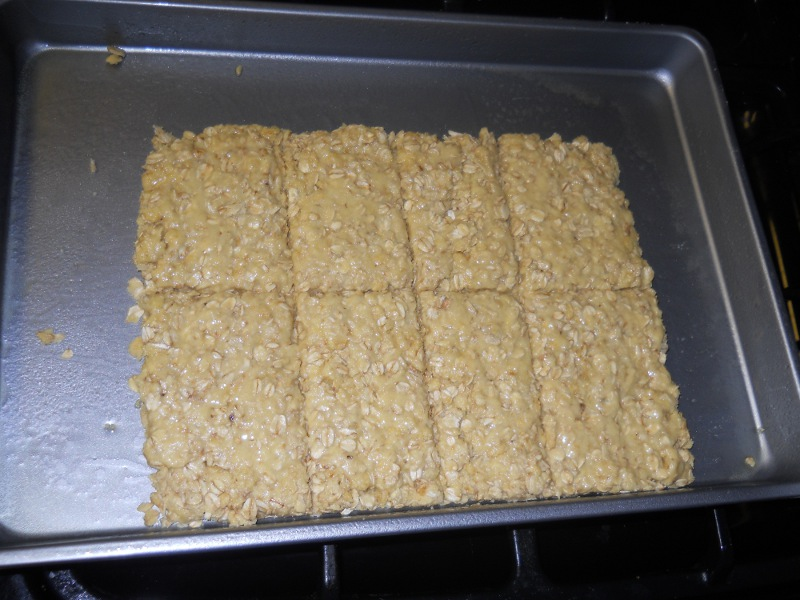 A Reader's Attempt at the Homemade Survival Bars and Some Troubleshooting