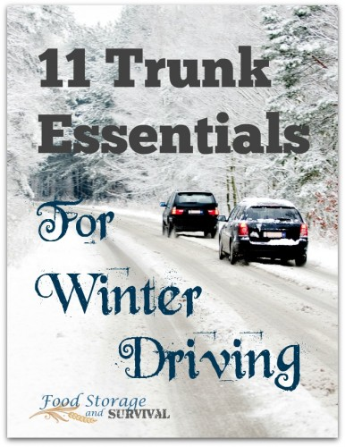 11 Trunk Essentials for Winter Driving.  Getting my car stocked right now!  From foodstorageandsurvival.com