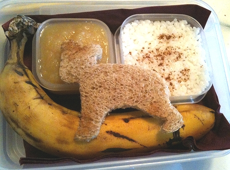 BRAT Diet For Tummy Troubles–Food Storage Style