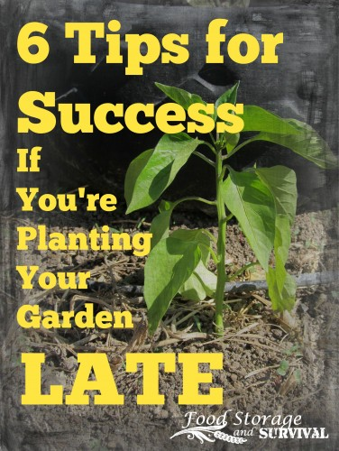 6 Great tips for success if you are planting your garden late!  Food Storage and Survival