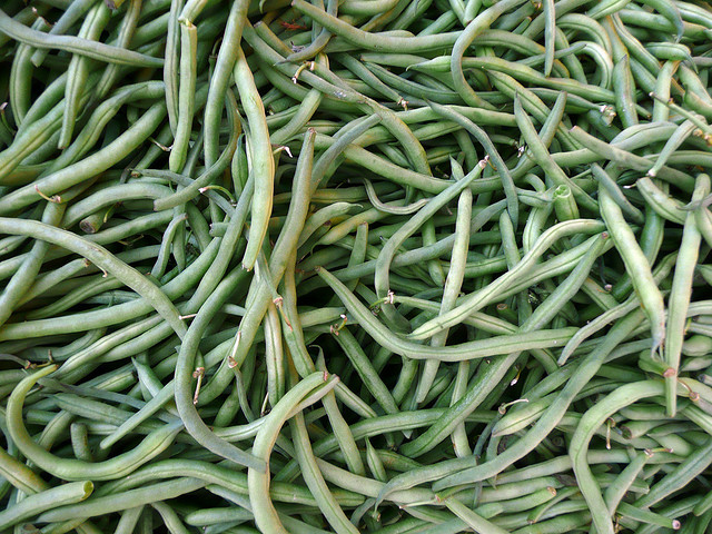 Dehydrating Green Beans
