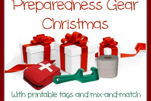 Twelve Days of Christmas–Preparedness Gear