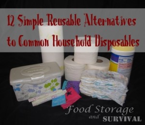 12 Simple Reusable Atlernatives to Common Household Disposables--Food Storage and Survival