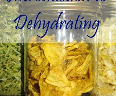 Food Storage and Survival Radio Episode 36: Introduction to Dehydrating