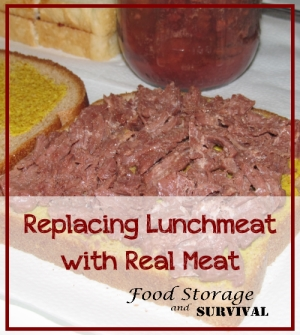 Replacing Lunch Meat with Real Meat