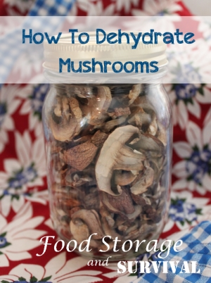 Always have mushrooms on hand by dehydrating them!  Easy step by step guide to dehydrate mushrooms.