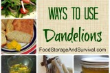 27+ Clever Ways to Use Dandelions