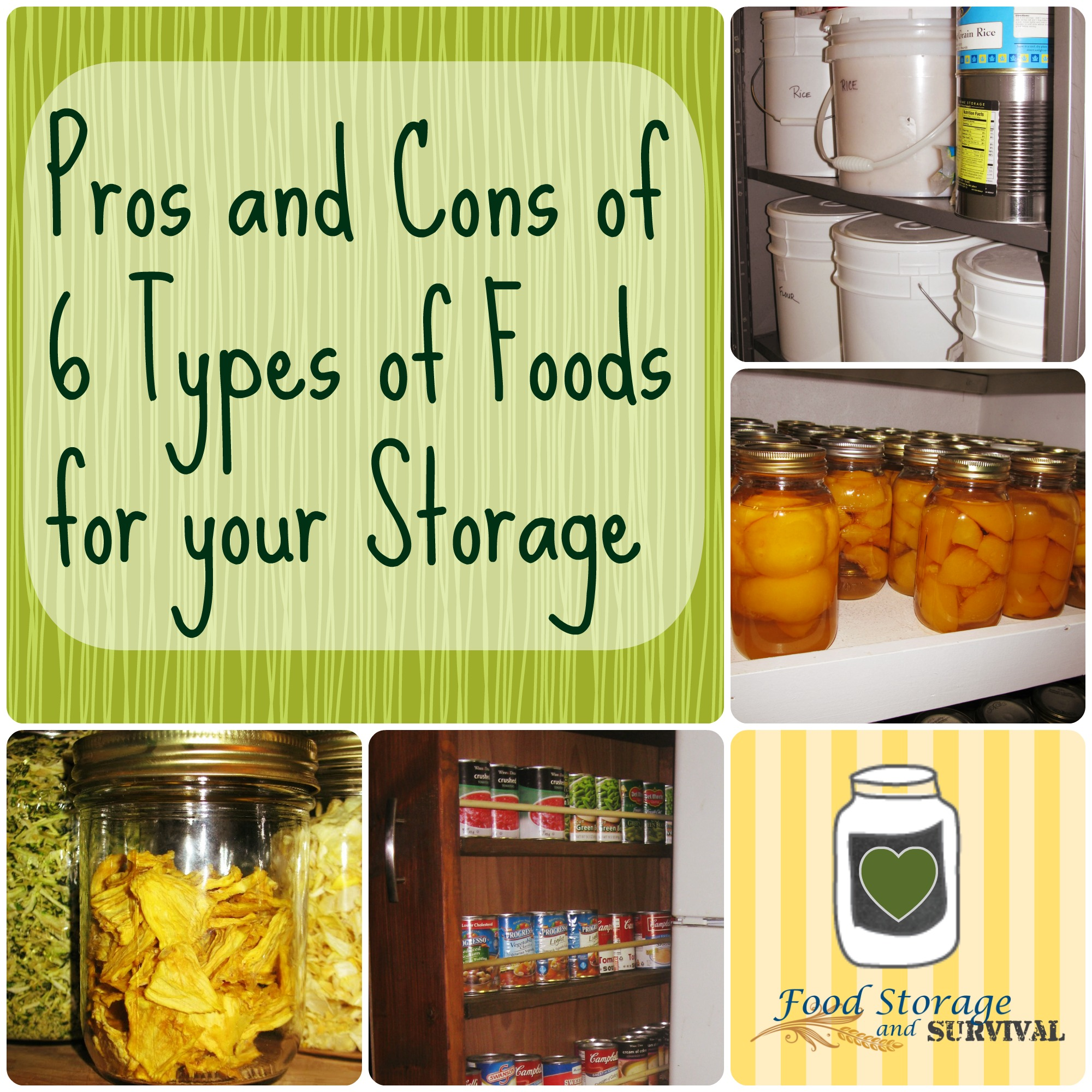 Listen in to Angela discuss the pros and cons of 6 types of foods for your  sc 1 st  Food Storage and Survival & Food Storage and Survival Radio Episode 50: Pros and cons of 6 Types ...