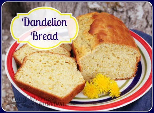 Use those dandelions to make this delicious dandelion bread! Yum!