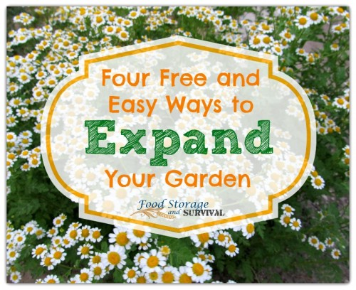Try these four FREE and EASY ways to get more plants in your garden!  Food Storage and Survival
