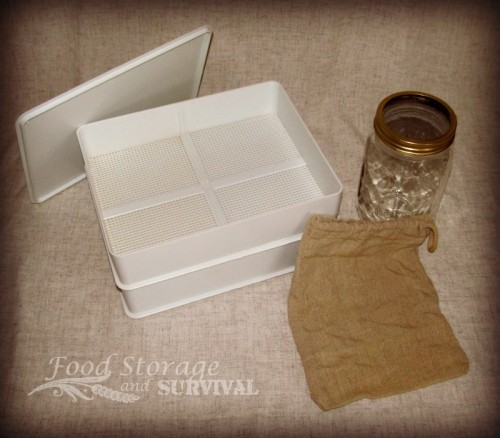 Getting Started Sprouting! What you need and how to do it!