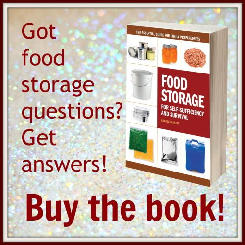 Introducing Food Storage for Self Sufficiency and Survival!  200 pages packed with food storage awesomeness!  Available now wherever books are sold.