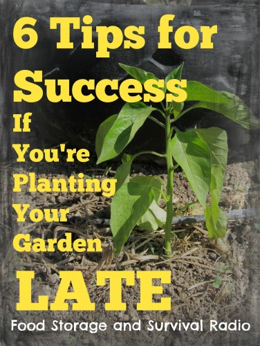Podcast--Six tips for success if you're planting your garden late!  Food Storage and Survival Radio