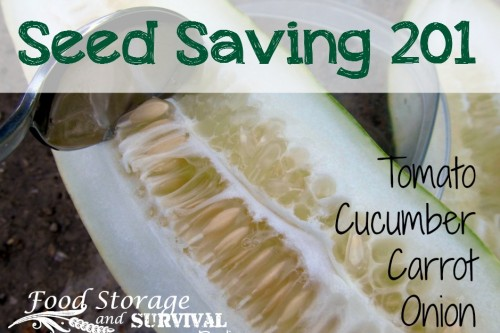 Food Storage and Survival Radio Episode 63: Seed Saving 201