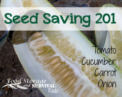 Seed Saving 201: tomato, cucumber, carrot, onion - Food Storage and Survival Radio