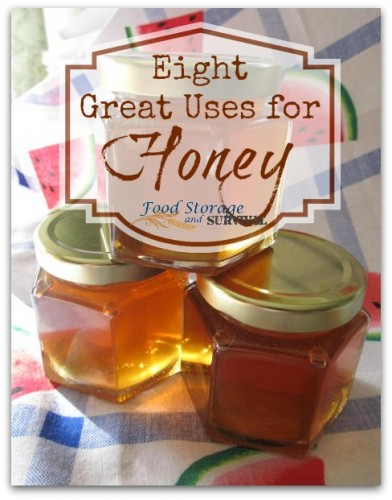 Eight Great Uses for Honey PLUS a honey giveaway (ends 10/8/14)!  Food Storage and Survival Radio