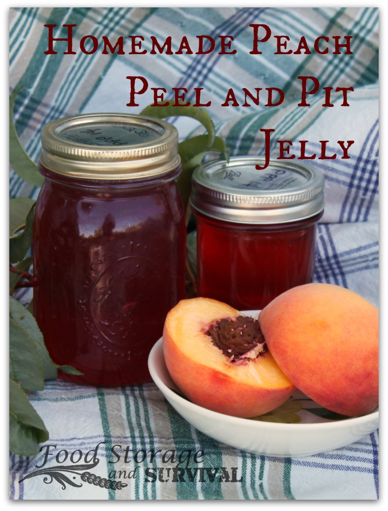 Canning Homemade Peach Peel and Pit Jelly