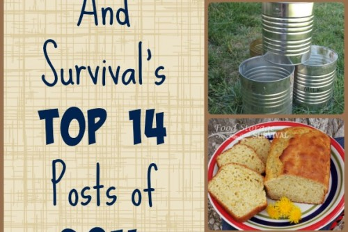 Food Storage and Survival's Top 14 Posts of 2014