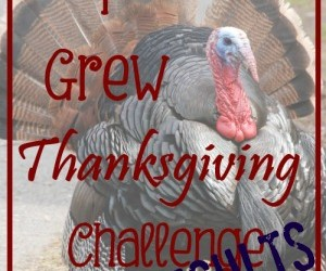 """The """"I Grew Thanksgiving"""" Challenge Results"""