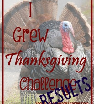 "The ""I Grew Thanksgiving"" Challenge Results"
