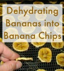 Dehydrating bananas into banana chips