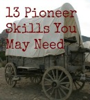 13 Pioneer Skills You May Need