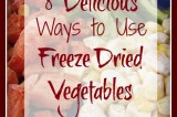 8 Delicious Ways to Use Freeze Dried Vegetables