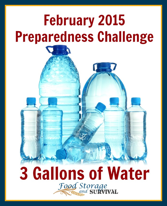 February's preparedness challenge is on and it's EASY!  Get 3 gallons of water stored for each person in your household! How to get it done at the link!