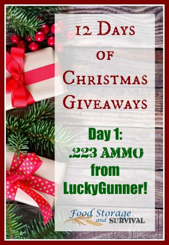 12 Days of Christmas Giveaways--Day 1: .223 ammo!  Ends 12/3/15