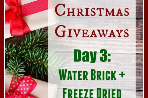 12 Days of Christmas Giveaways–Day 3: WaterBrick and Freeze Dried Fruit Case