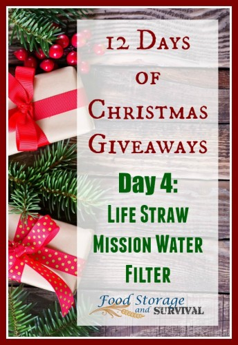 12 days of Christmas Giveaways--Day 4: LifeStraw Mission water filter from EarthEasy! Ends 12/6/15