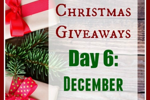 12 Days of Christmas Giveaways–Day 6: Creek Stewart's December Apocabox