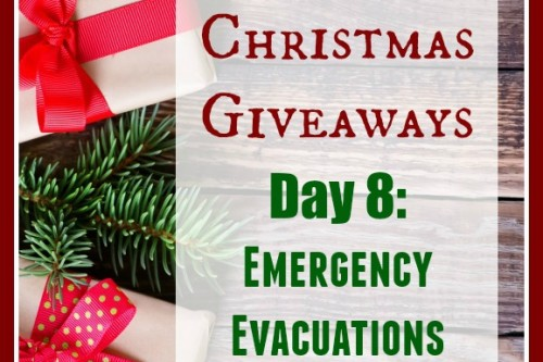 12 Days of Christmas Giveaways–Day 8: Emergency Evacuations by Lisa Bedford