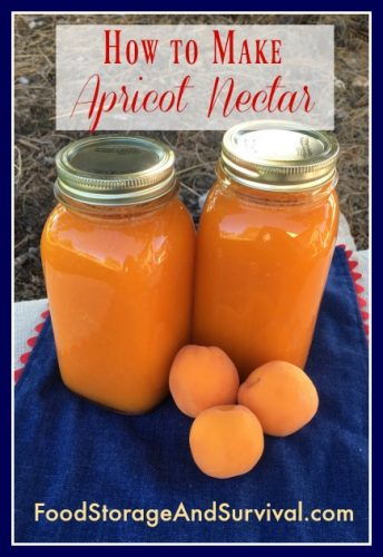 Making and canning your own homemade delicious apricot nectar is so easy! Step by step directions here!