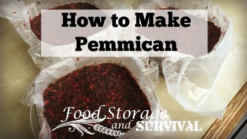 How to make pemmican--primitive survival food!
