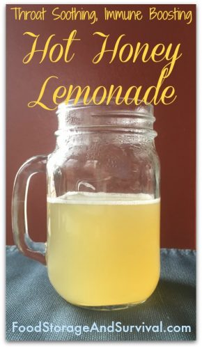 Throat soothing, immune boosting, hot honey lemonade! Yum!