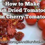 The Best Use for Extra Cherry Tomatoes! How to Make Sun Dried Tomatoes